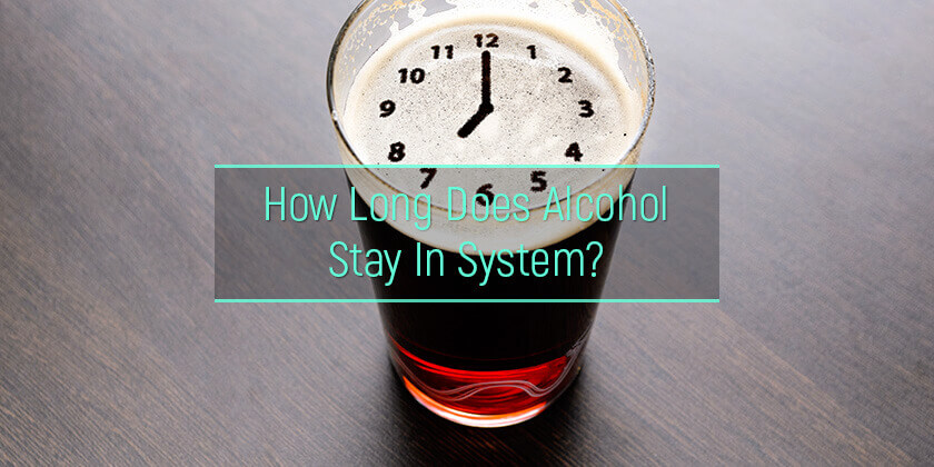 how long does alcohol stay in system?