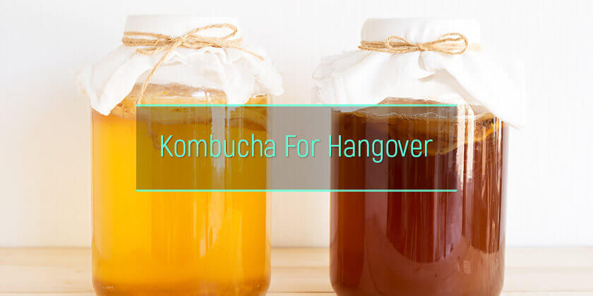 Kombucha Hangover Cure: Is Fermented Tea Good Or Bad For